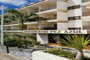 Pez azul apartamentos hotel tenerife spain spain hotels sunsearch holidays - Apartamentos pez azul tenerife ...